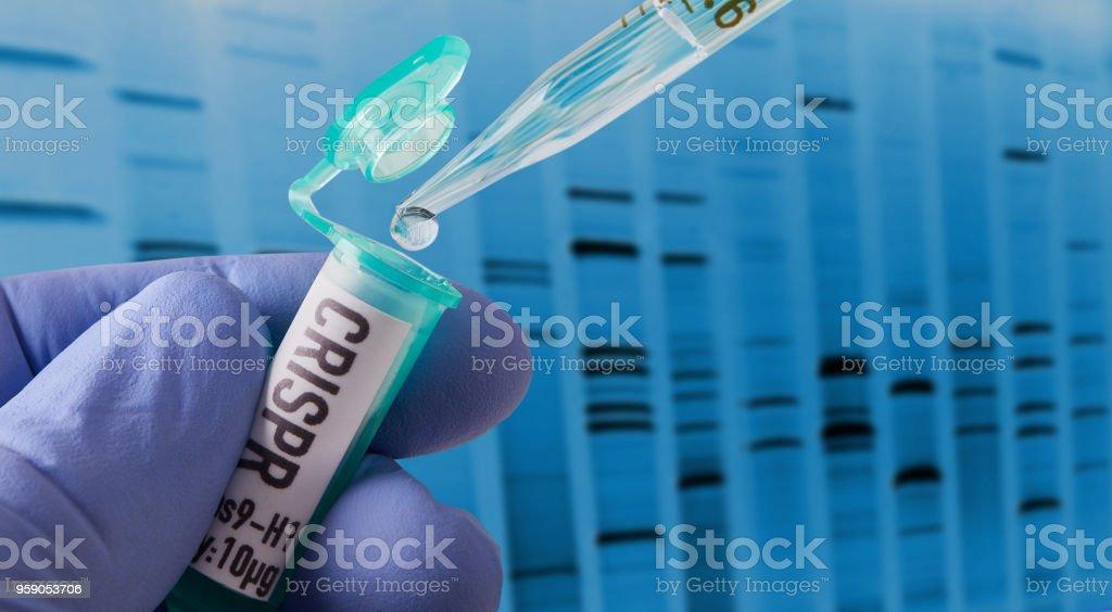CRISPR-Forschung im Labor – Foto