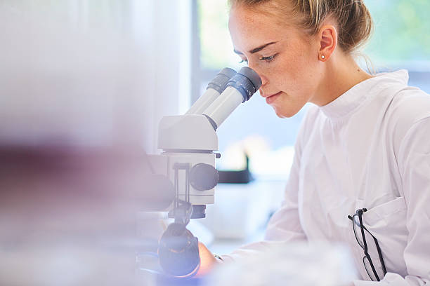 research student scientist - microbiology stock pictures, royalty-free photos & images