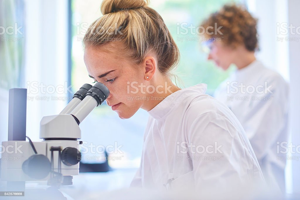 research student scientist stock photo