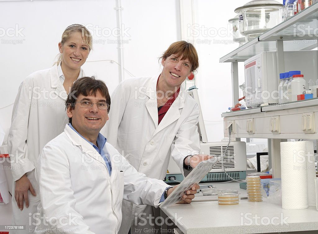 Research team royalty-free stock photo