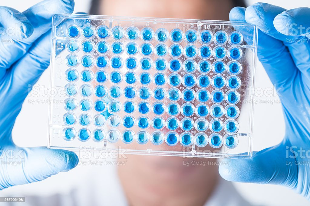 researcher hold a multiwell sample plate stock photo