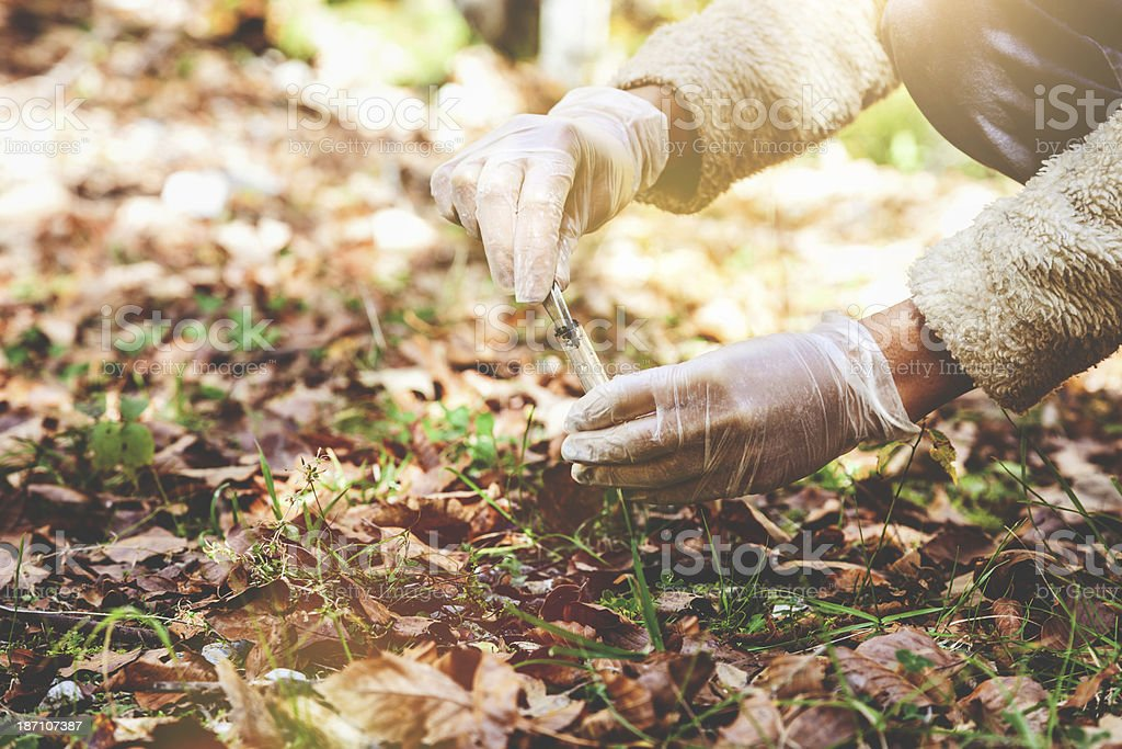 Researcher in the forest royalty-free stock photo