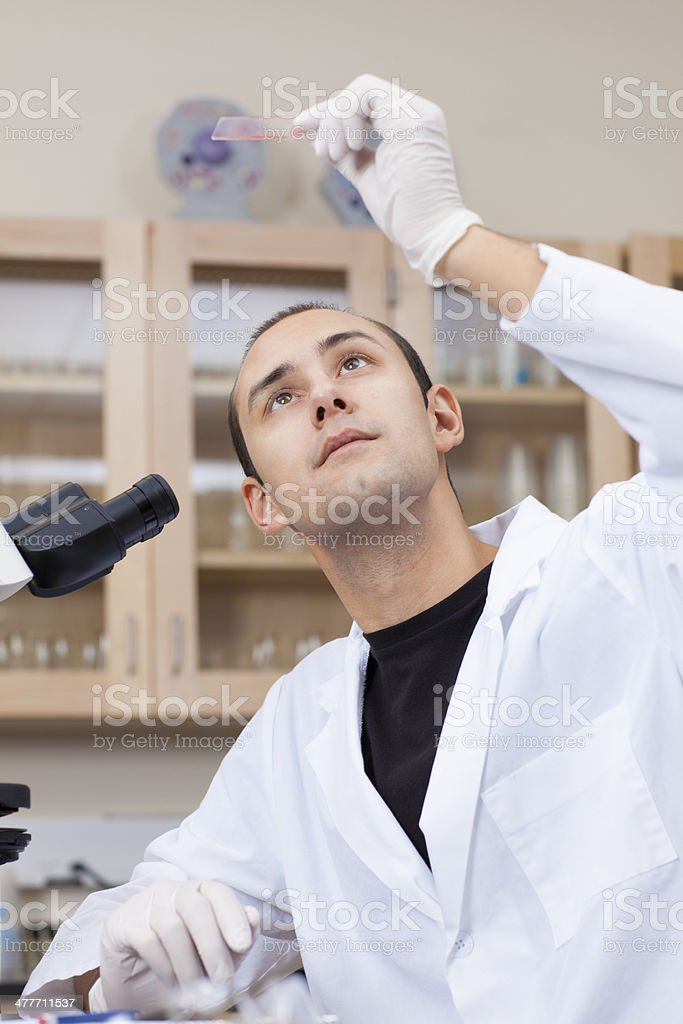Researcher looking at samples in a laboratory stock photo