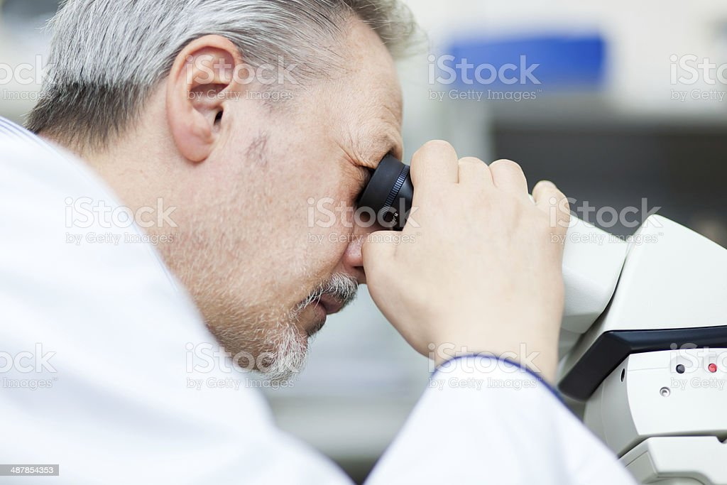Researcher loooking through microscope royalty-free stock photo