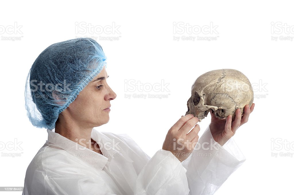 researcher with skull royalty-free stock photo