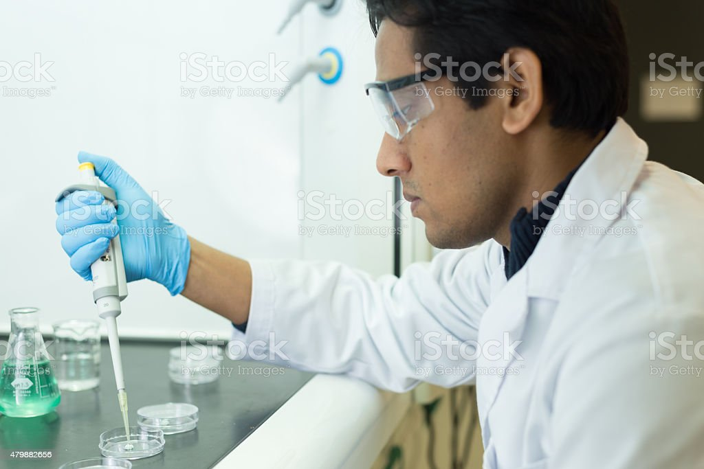 Researcher working with a Pipette and Petri Dishes stock photo