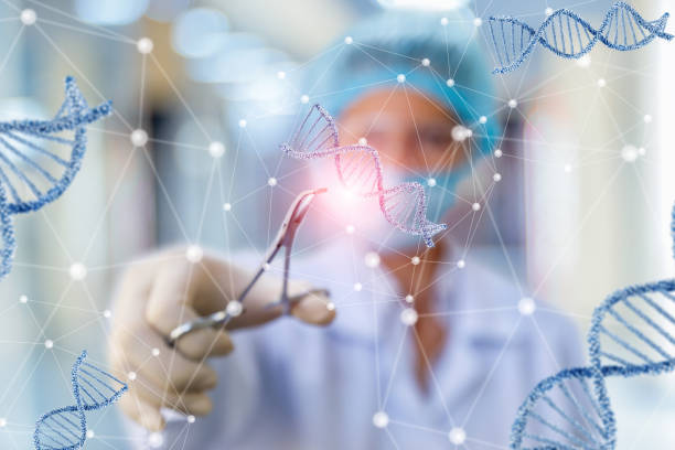 Researcher working with DNA . stock photo