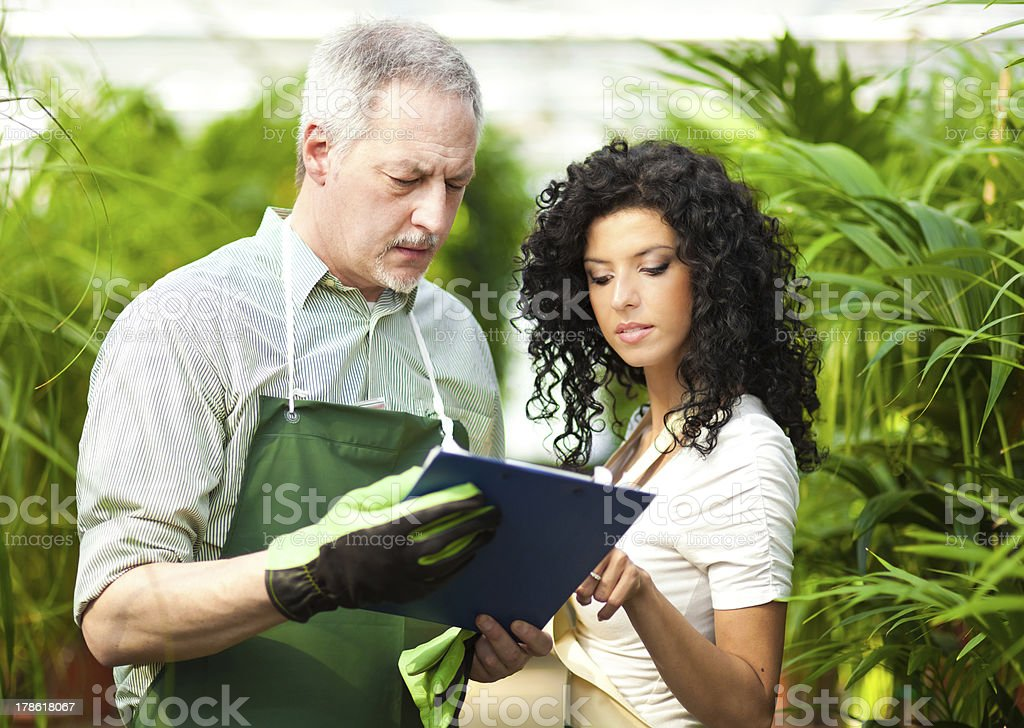 Researchers in a greenhouse royalty-free stock photo