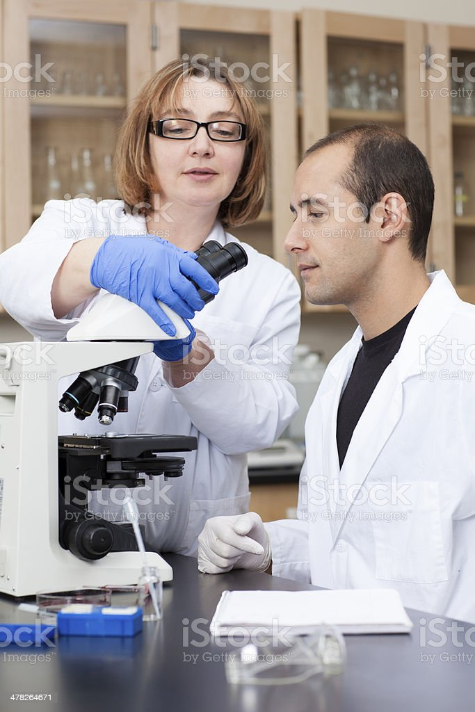 Researchers in laboratory examining a sample through microscope royalty-free stock photo