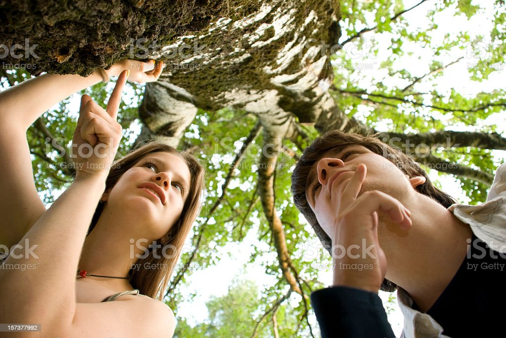 Researching nature royalty-free stock photo