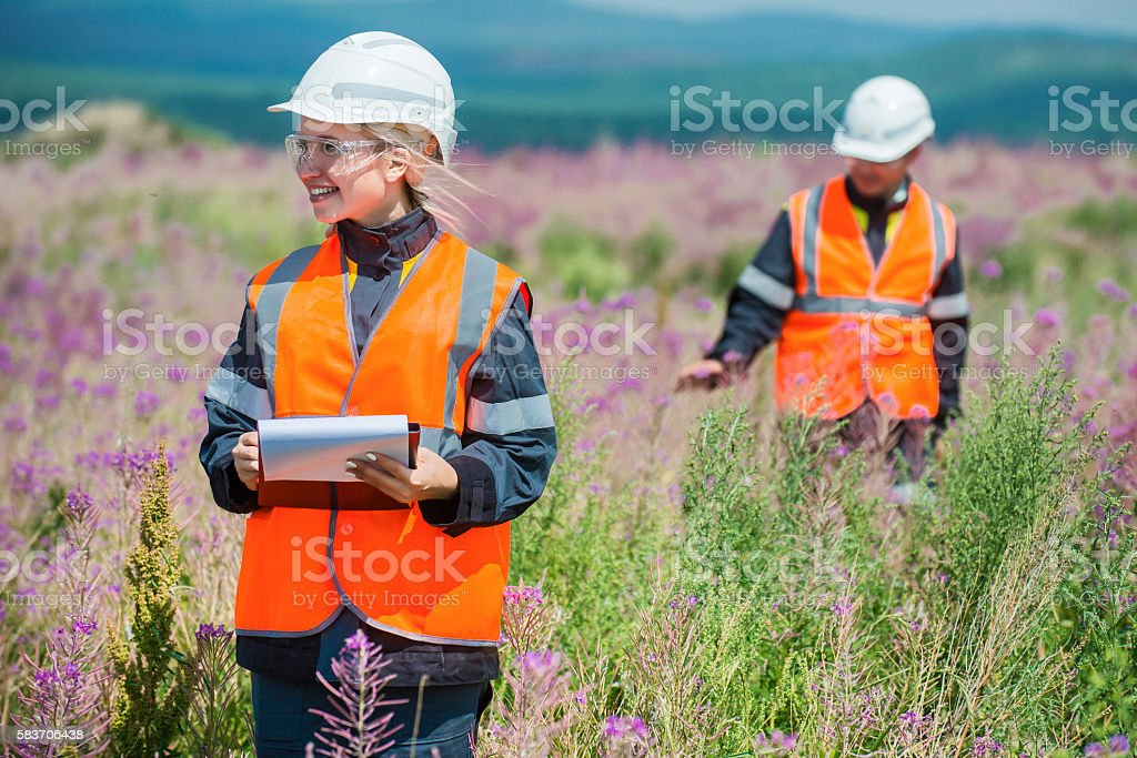 Researching recultivated field stock photo