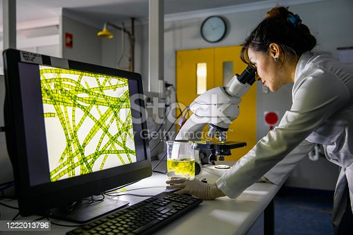 A side-view shot of a female scientist looking through a microscope to analyse her findings in Perth, Australia.