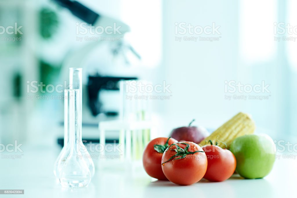 Researching vegetables stock photo