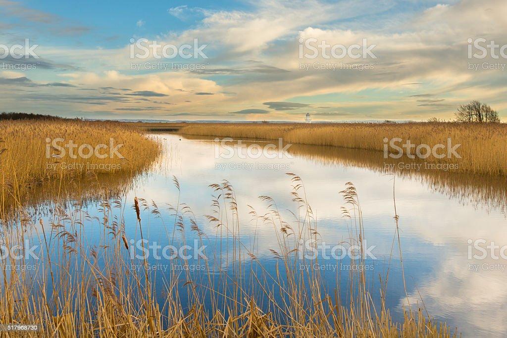 RSPB Reserve Newport Wetlands, Newport, Wales stock photo