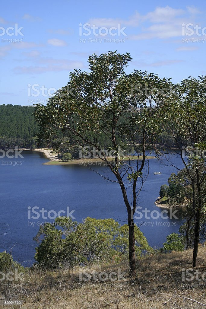 Reservoir with tree royalty-free stock photo