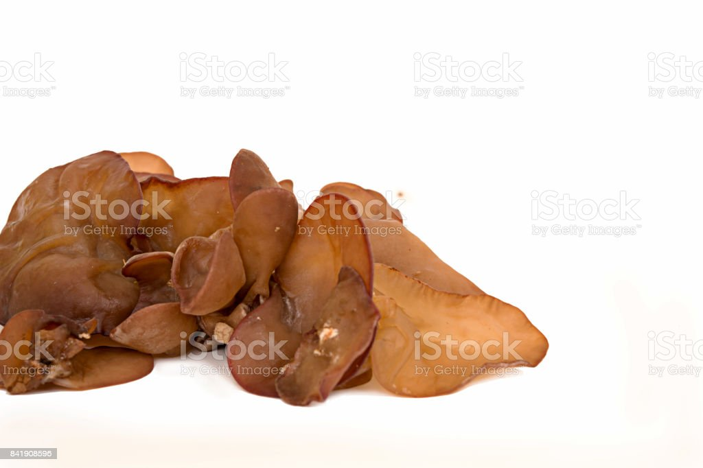 resh black fungus,Jew's Ear Mushroom stock photo