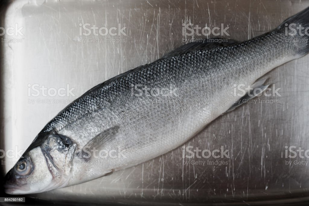 resh whole silver sea bass on vintage shiny silver plate stock photo