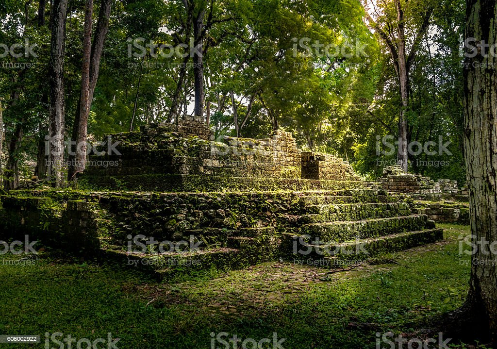 Residential area of Mayan Ruins of Copan, Honduras stock photo