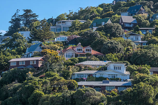 Residential area on Sumner Beach in Christchurch – Foto