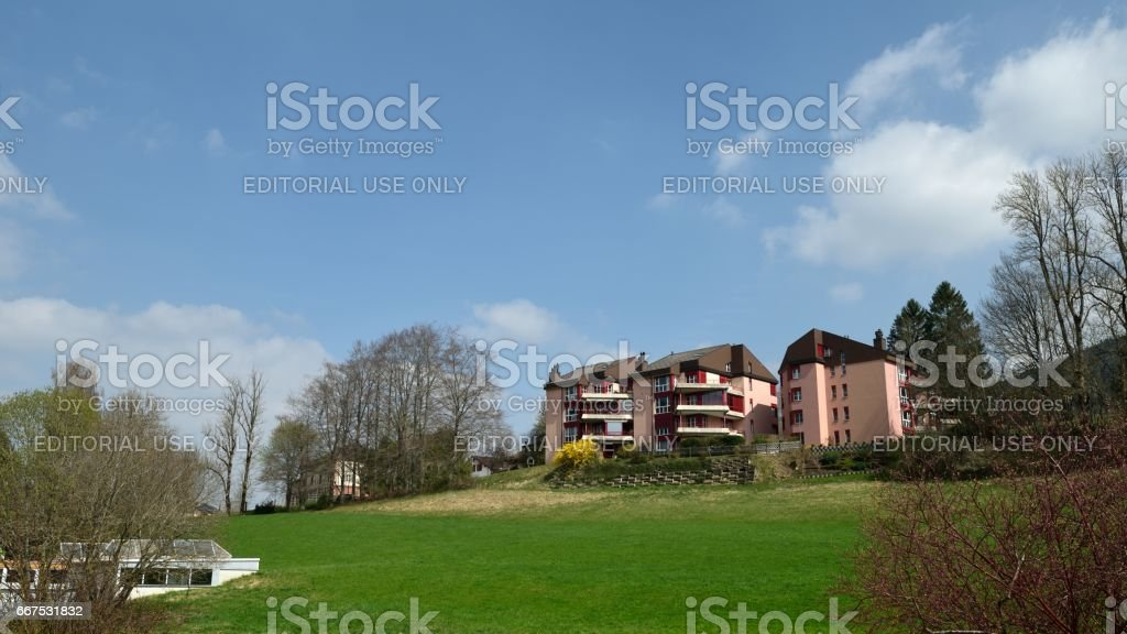 Residential district and green lawn foto stock royalty-free