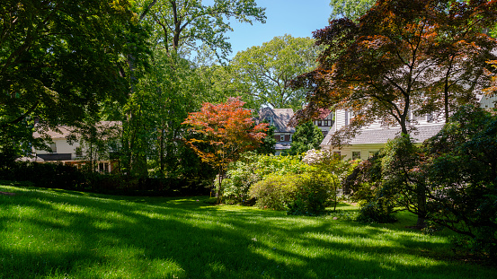 Houses on a street of Scarsdale, a small town in Westchester, New York State, USA, in the sunny summer day.