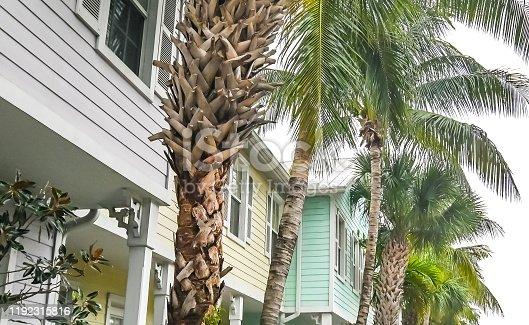 108220043 istock photo Residential pastel townhouses in suburban community neighborhood 1192315816