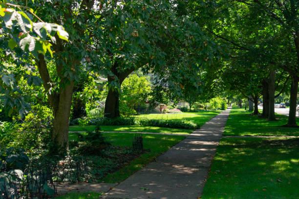 bostäder skuggade trottoaren med gröna träd i evanston illinois - skuggig bildbanksfoton och bilder