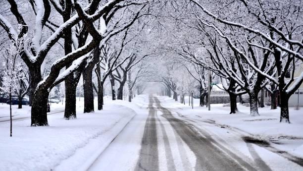 residencial calle cubierta de nieve fresca durante una ventisca. - chicago illinois fotografías e imágenes de stock