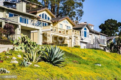 Residential street, Santa Cruz, California