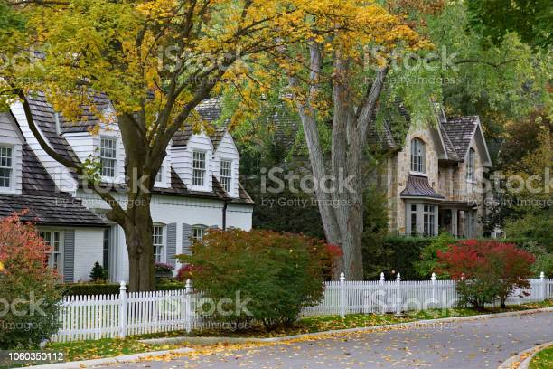 Photo of residential street  with mature trees and fall color