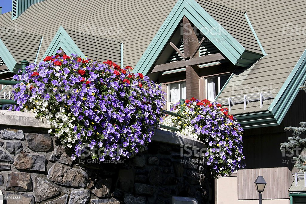 Resort Hanging Flowers royalty-free stock photo