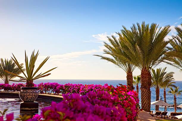 Resort in Cabo San Lucas, Mexiko – Foto