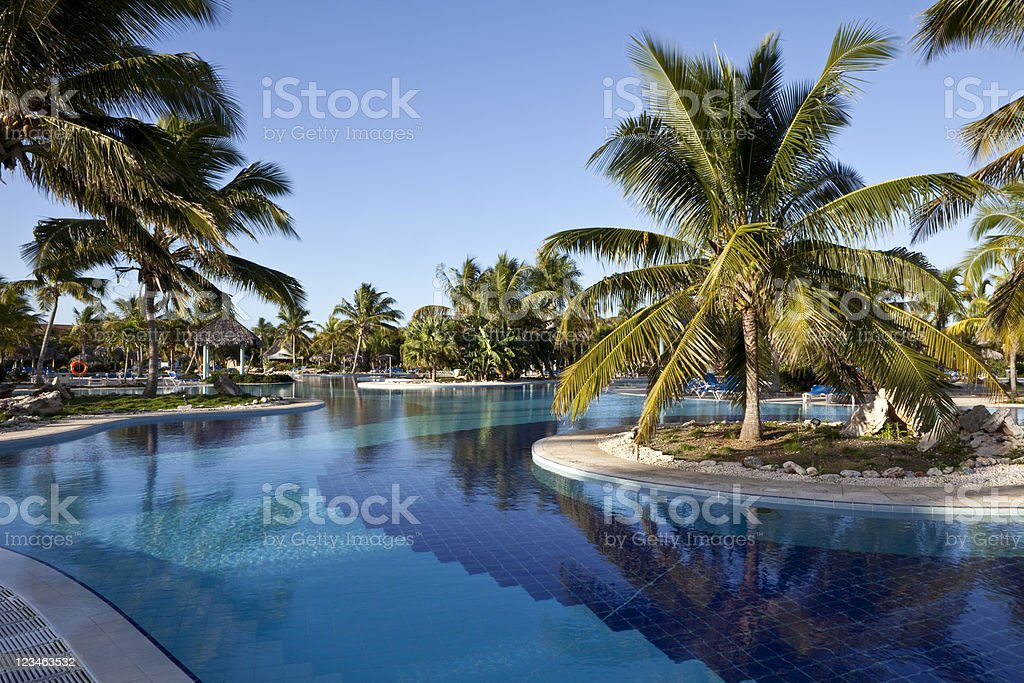 Resort Swimming Pool with Palm Trees stock photo