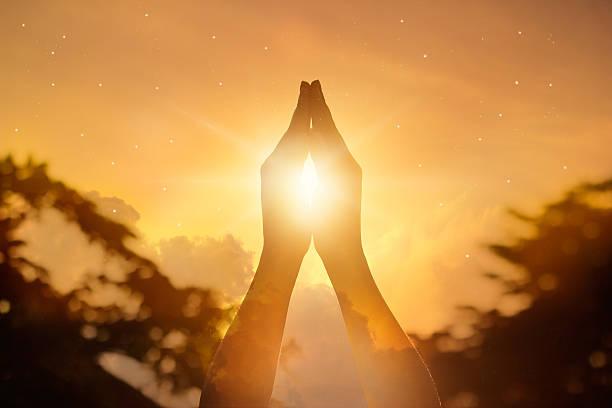 존중 및 기도하다 on 네이쳐향 배경기술 - 부처 불교 뉴스 사진 이미지