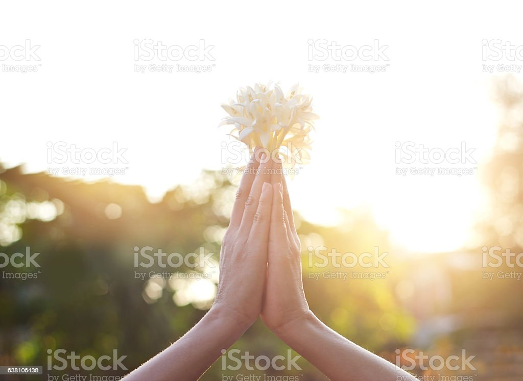 Respect and pray with flower on nature background stock photo