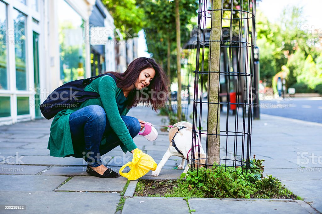 Responsible woman cleaning up the sidewalk in London, Notting Hill stock photo