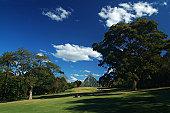 Rest in the Royal Botanic Garden