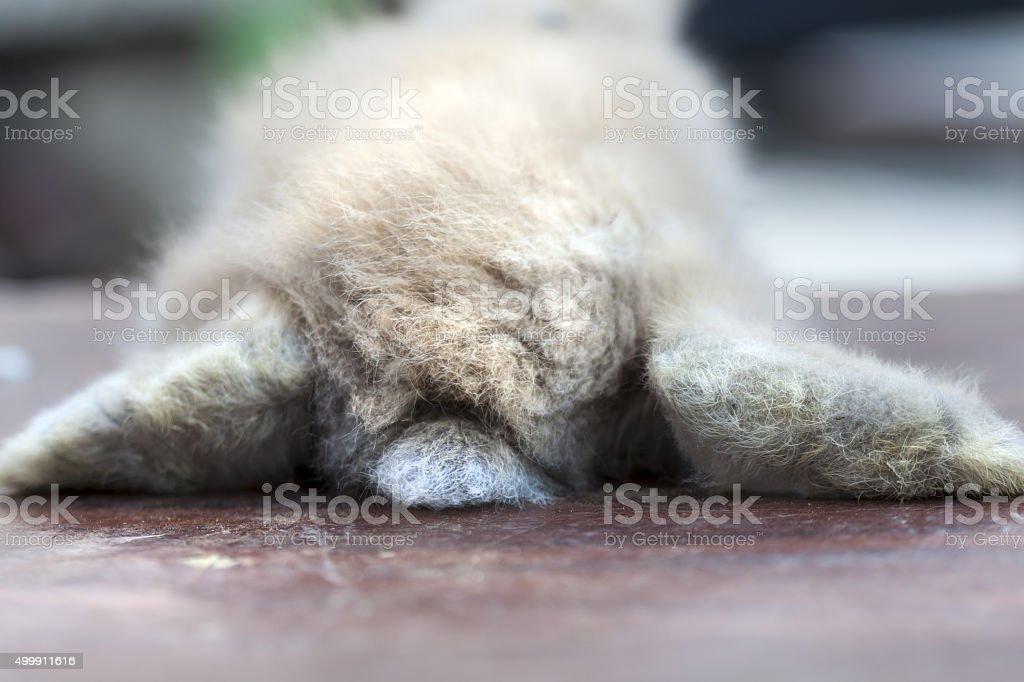 Rest.. stock photo