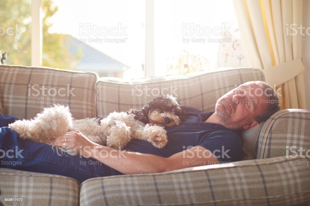 rest time stock photo