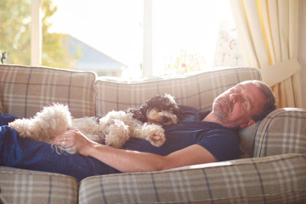 rest time - laziness stock photos and pictures