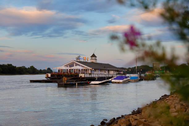 restaurant schwimmende bootshaus albatros, köln - restaurant köln stock-fotos und bilder