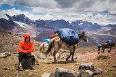 istock Resting in high altitude trek trough Peruvian Andes. 1265290055