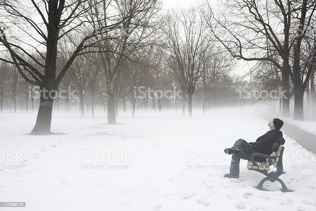 Resting on the Bench royalty-free stock photo