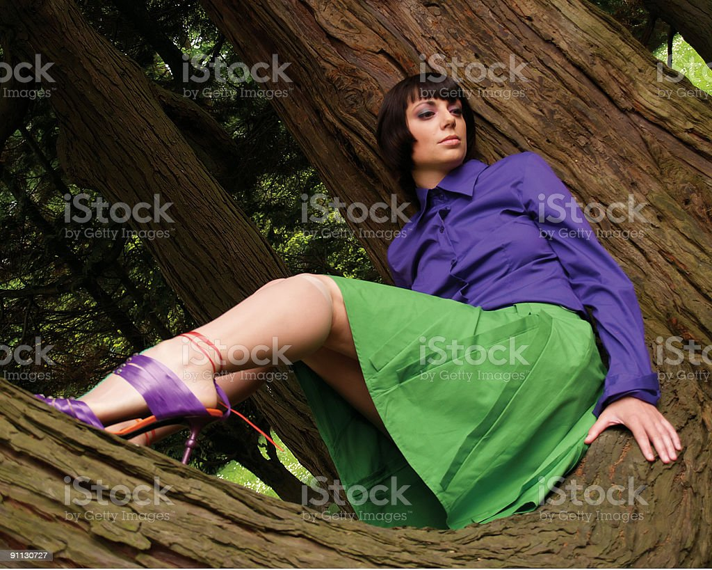 Resting on Tree Branch. royalty-free stock photo
