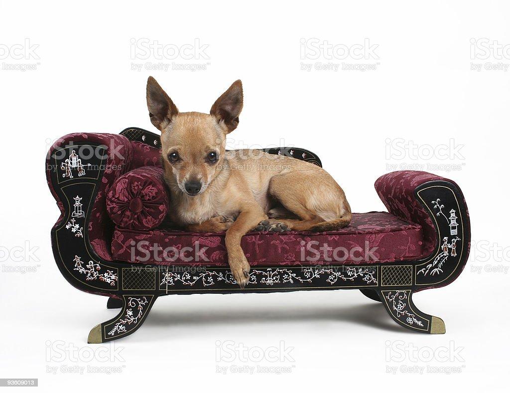 Resting stock photo