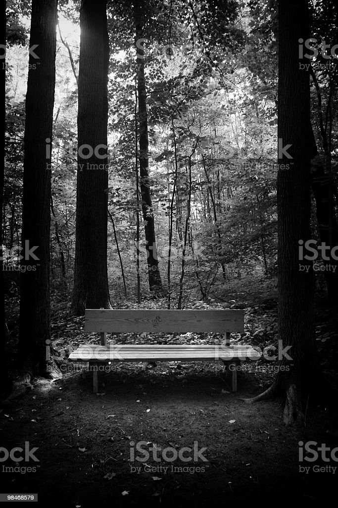 Resting place in the forest royalty-free stock photo