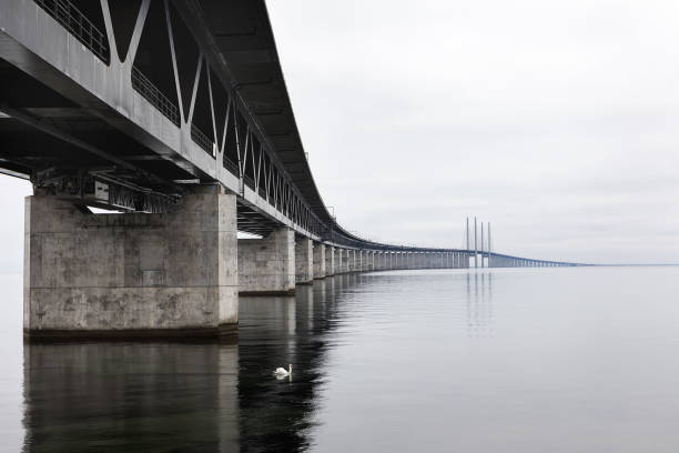 öresundsbron mellan sverige och danmark. - öresundsregionen bildbanksfoton och bilder