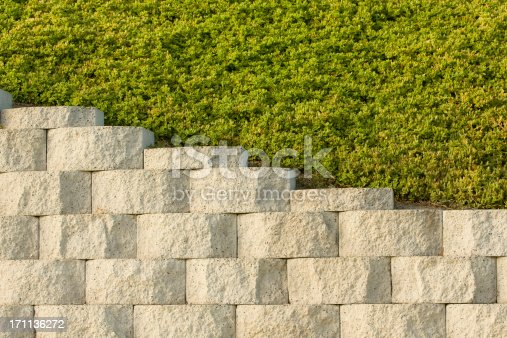 Ground cover grows above retaining wall. Nice pattern or background.
