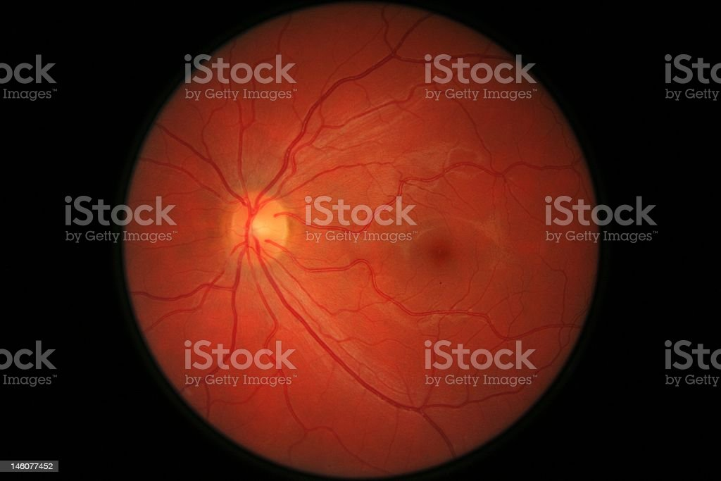 Retina eye scan stock photo