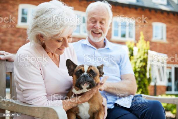 Retired couple sitting on bench with pet french bulldog in assisted picture id1045352142?b=1&k=6&m=1045352142&s=612x612&h=srdd2 drbqit4o5lyg7km8ri7w5ffvs3buj92s hgnq=